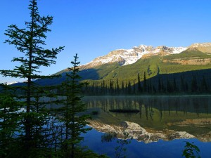 Jasper National Park Canadian Camping Association